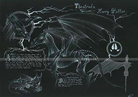 Sombrals / Thestrals - Harry Potter by Zellgarm