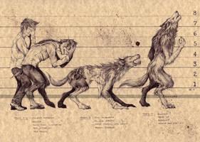 THE WEREWOLF (2) by Zellgarm