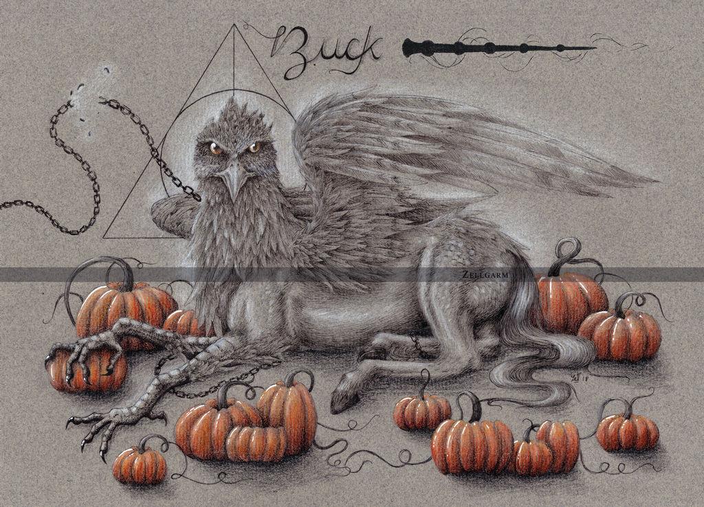 BUCK - HARRY POTTER by Zellgarm