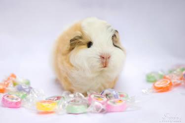 Candy's candies. by ApopFrauks