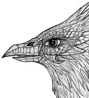 Bird head by Abydell