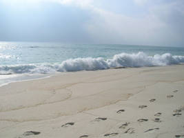 Places - Beach 2 by Stock-gallery