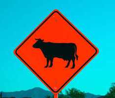 Cow Sign by Hop41