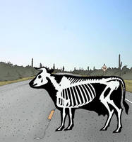 Dead Cow Road by Hop41