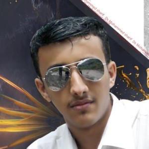 al-qanas's Profile Picture