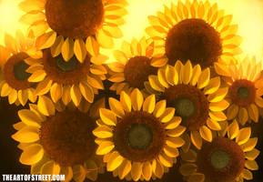 Sunflower Bundle by ArtofStreet