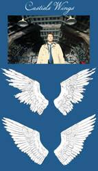 Castiel's Wings (Sketch) by AmericanAngel117