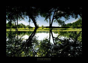 mirrored reflection by bosniak