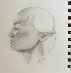 Elf Side Profile by TwoSillyBuns