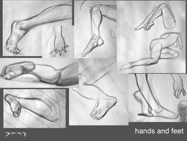 Life Drawings - Hands and Feet by Sycra