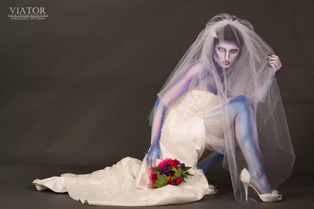 Bride Of Frankenstein 3 By Viator Defessus On Deviantart
