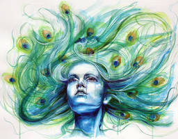 Peacock by KlarEm