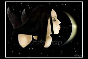 Dark wing by Drakenborg