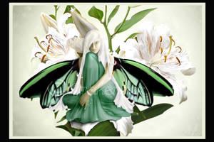 Butterfly fairy-birdwing by Drakenborg