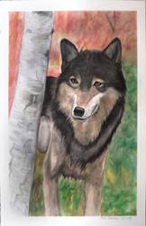 Wolf Paniting by blondewolf2