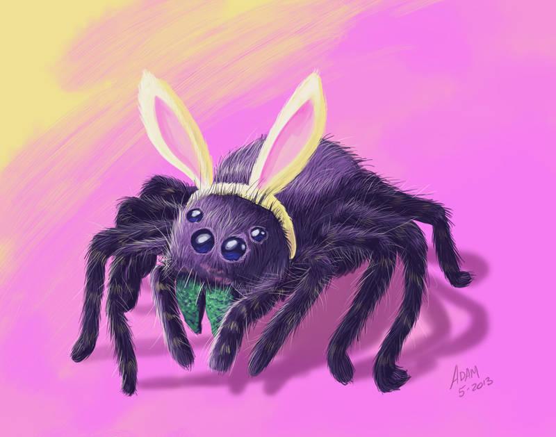 Tarantula With Bunny Ears My First Digital Draw By Jadamfox On