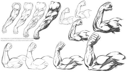 Comic Style Arm Poses Step by Step by robertmarzullo