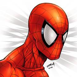 Spider-man by robertmarzullo