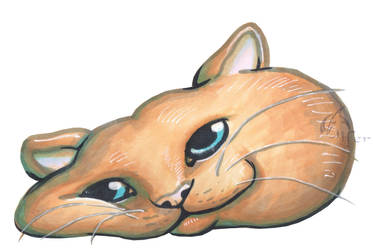 Copic Workshop - Cat Face by Juandfr