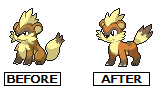 Thrylon Growlithe Before and After by WaterTrainer