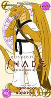 Negima Pactio Card - Shade by RidleyStarsmore