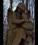 Vvedenskoe Cemetery IV by Lyssiana