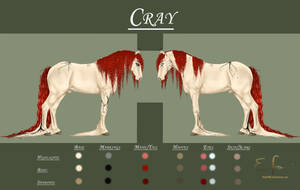 Cray Reference by Shenim