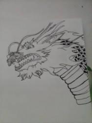 Hanzo Dragon by didadoll