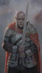 The Grey elf by saadirfan