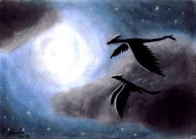 Night Flight by Gewalgon