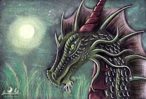 Holy Dragonnight by Gewalgon