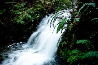 Tiptoe Falls by sean335
