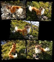 Fox Artdoll Fotoshooting by SpankTB