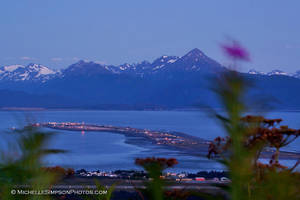Fireweed and the Spit by MSimpsonPhotos
