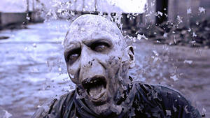 Lord Voldemort Died by lisong24kobe