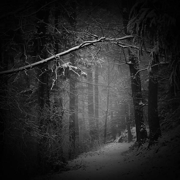 Les nuances du silence by Azaleos