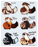 Furret Variations by Linaeve