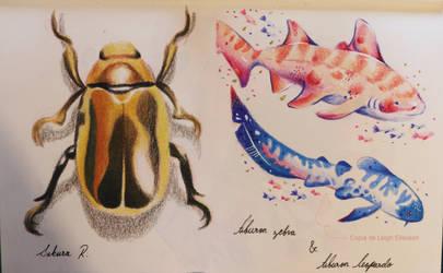Practica animalitos by Axowen
