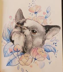 Copia de Leigh Ellexson Su perrito xd by Axowen