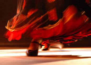 flamenco by sylwiaolszewska
