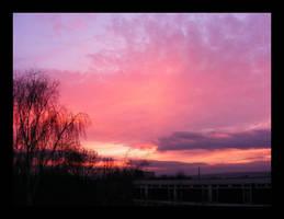 Heavenly pink III by hamti