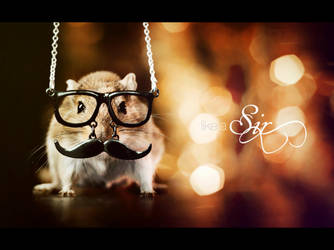Like a Sir by hyouro