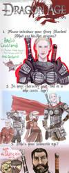 Dragon Age Origins Meme by blankcanvas007
