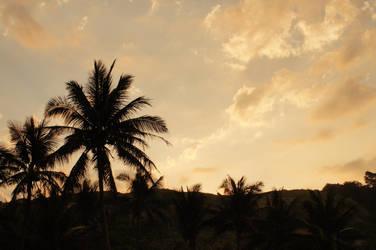 Golden Tropics by chadestioco