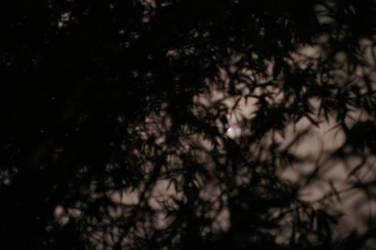 The Night Holds Secrets Aplenty by chadestioco