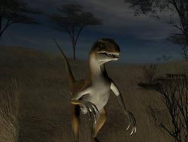 Raptor at night by Sturmblut