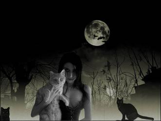 Bye Kitty by emreinstein