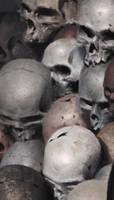 more skull by JiHunLee