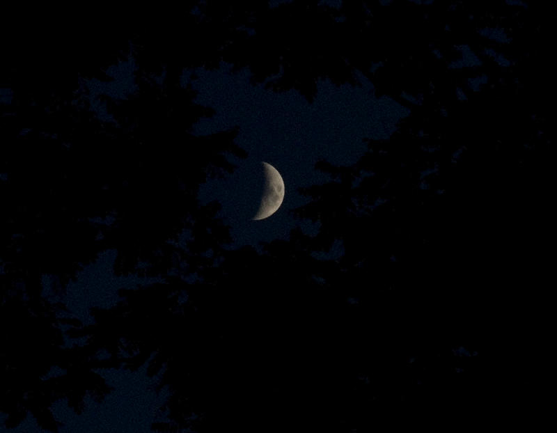 Moon Over Clearfield by slephoto