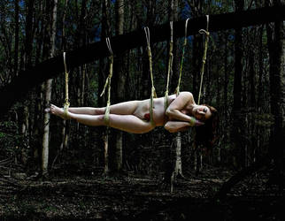 Sleeping Beauty by slephoto